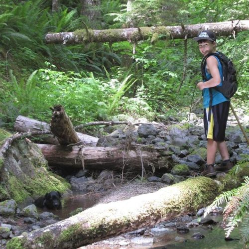 Olympic Project Bigfoot Expedition