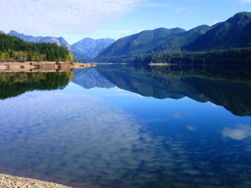 Bumping Lake Bigfoot